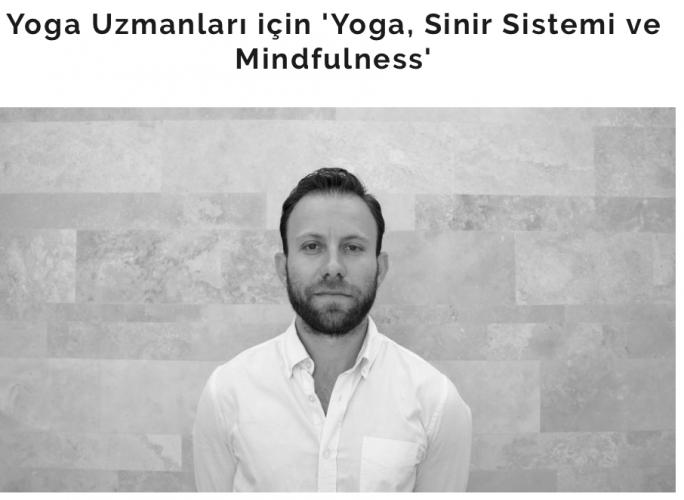 Yoga Uzmanları için 'Yoga, Sinir Sistemi ve Mindfulness'