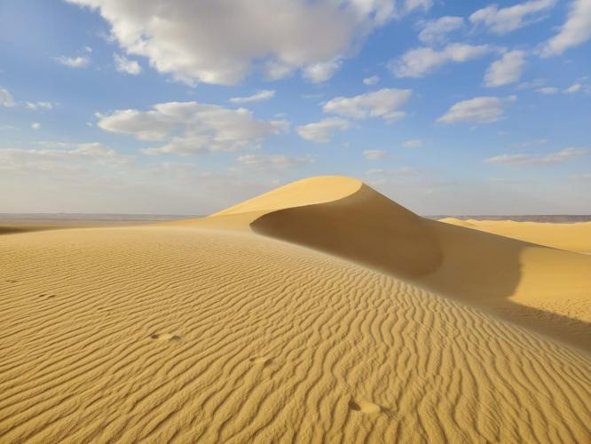 Büyüleyici Sahra Çölü'nde Meditasyon ve Şifa İnzivası Gamze Lee Şeber