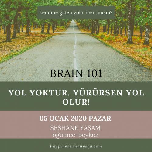 Brain 101 Neslihan Gül