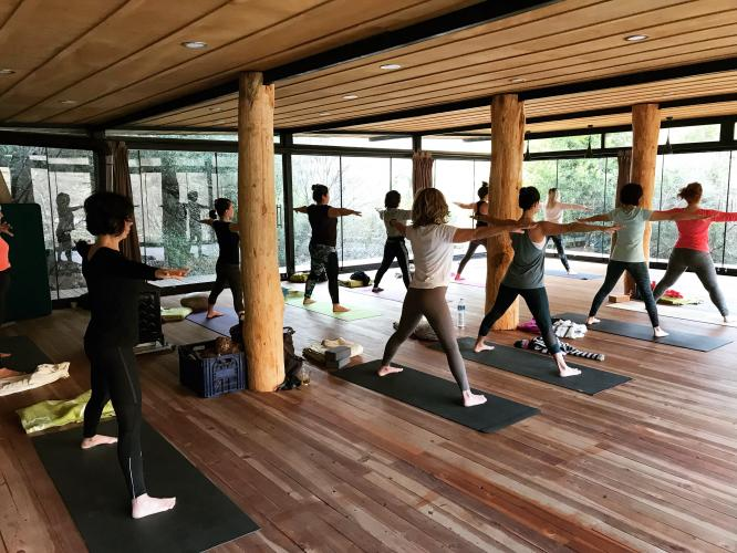 Geyikbayırı Yoga Kampı Faruk Kurtuluş