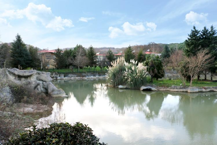 Yoga& Ötesi, Şile Kampı II Sanem Ekiz