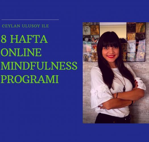 Online Mindfulness Hafta içi Grubu Ceylan Ulusoy