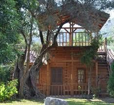 Yoga Ve Osho Aktif Meditasyon Kampı Seda Shambavi