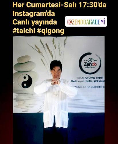 Online Tai Chi Çigong