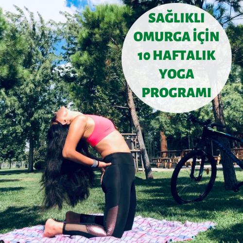 Sağlıklı Omurga İçin Destekleyici Yoga Programı Seda Vardı