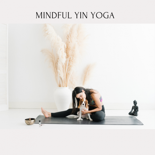 Mindfulness Temelli Yin Yoga Aslı Taşdemiroğlu