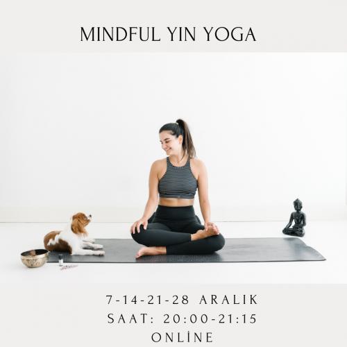 Mindfulness Temelli Yin Yoga