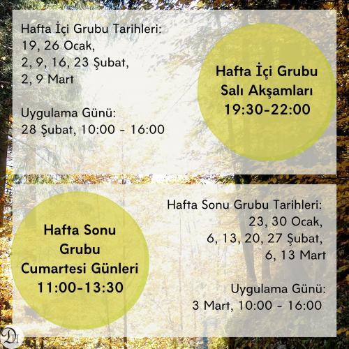 Mindfulness Temelli Stres Azaltma Programı (MBSR) Didem Hacıpaşaoğlu