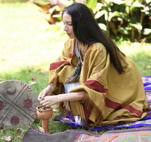 Bitki Alemi ve 5 Kadim Unsur Uzmanlık Programı Özlem Özülker