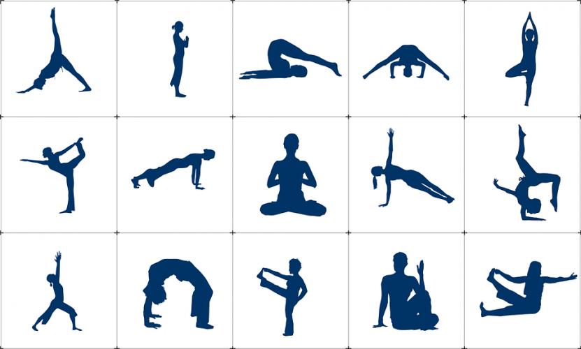 Evde Yoga İlknur Çamlık