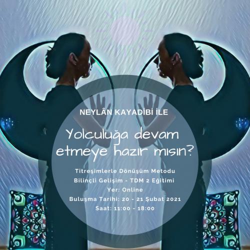 Neylan Kayadibi ile Titreşimlerle Dönüşüm Metodu Bilinçli Gelişim(TDM2)