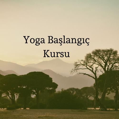Yoga Başlangıç Kursu