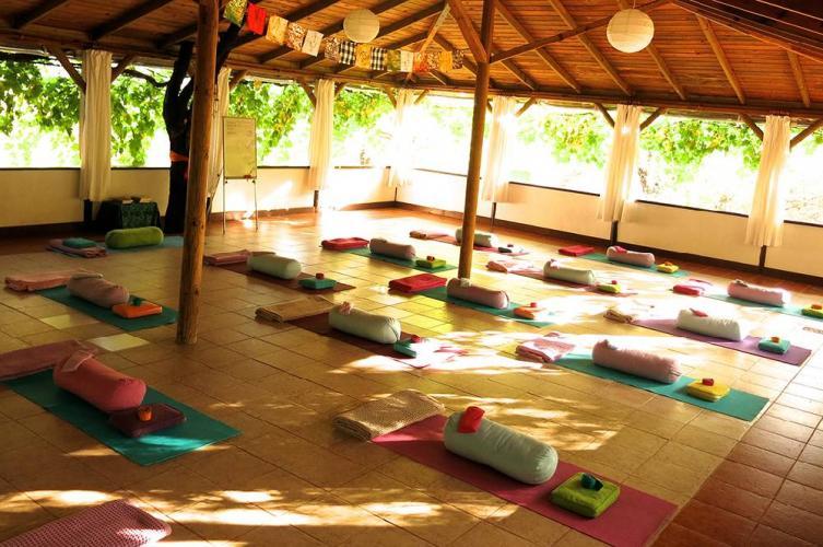 Yoga ve Gyrokinesis® Tatili Betül Yetiş Kaya