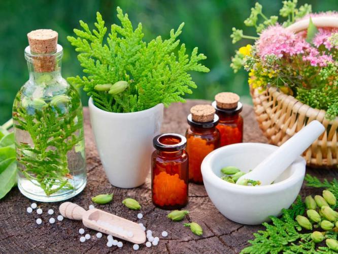 İçten Dışa Şifa ve Güzellikte Homeopati Vildan Şengöz