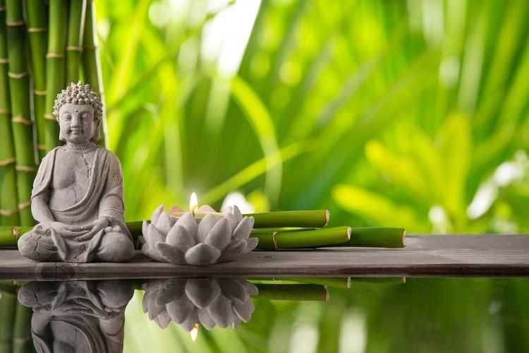 Zen Reiki ve Zen Budist Meditasyon Atölyesi