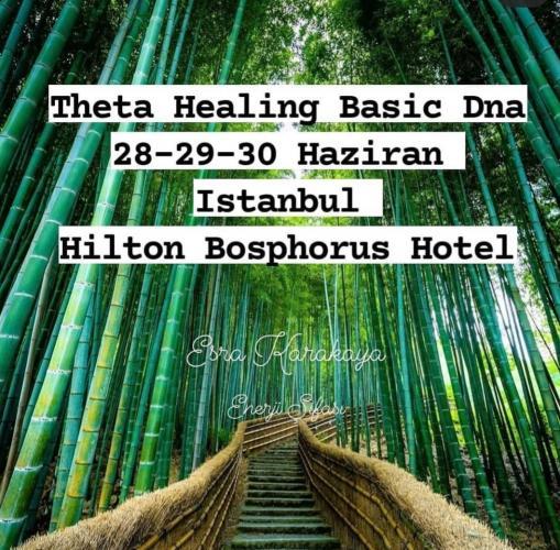Theta Healing Temel Seviye-Basic Dna Programı