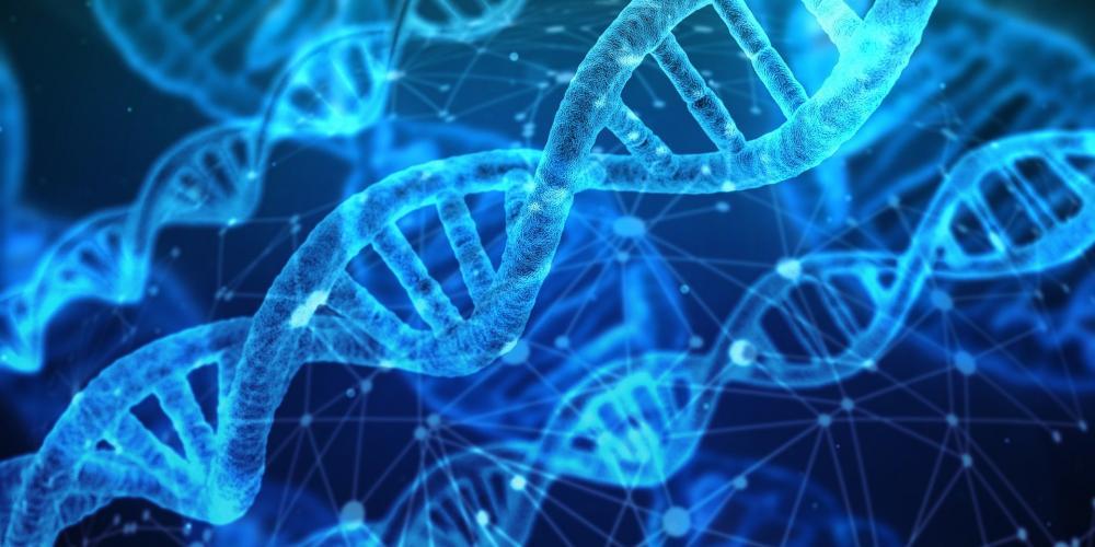 Thetahealing Basic/Temel DNA Semineri Fatma Varnalı