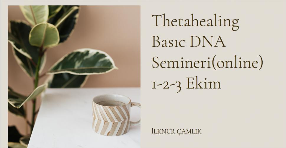 Thetahealing Basıc DNA Semineri