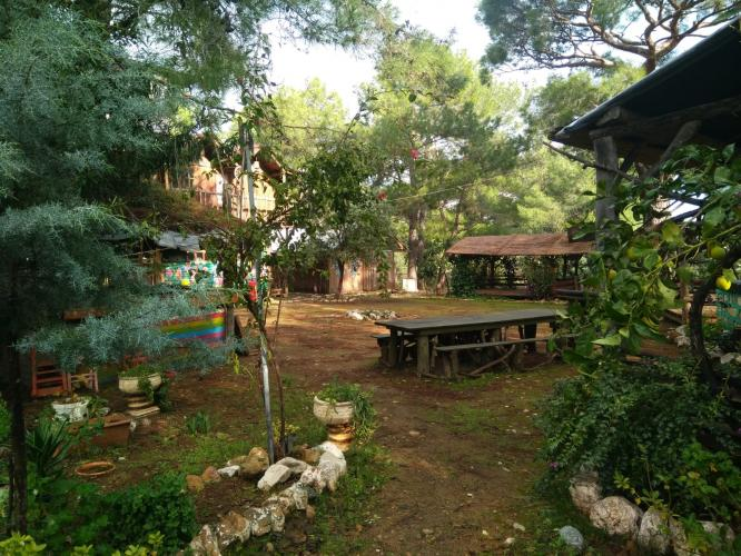 Selim Genişol ile 5 Element Yoga Kampı Selim Genişol