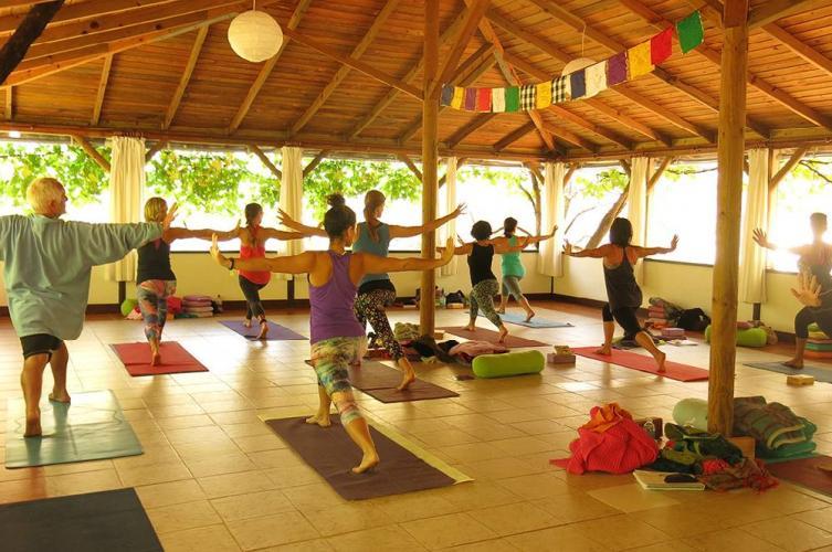 """Huzur Valley """"Vinyasa Serileme Sanatı"""" İleri Seviye Yoga Programı (60 Saat)"""