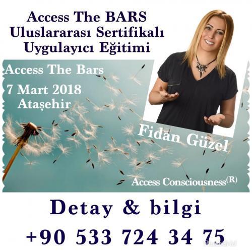 Access The Bars Uluslararası Sertifikalı Uygulayıcı Eğitimi