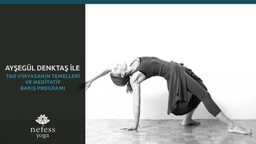 Tao Vinyasanın Temelleri ve Meditatif Bakış Programı