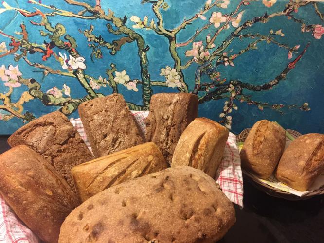 Gezgin Maya ile Ekşi Mayalı Ekmek Atölyesi Serra Atasoy Berbercuma