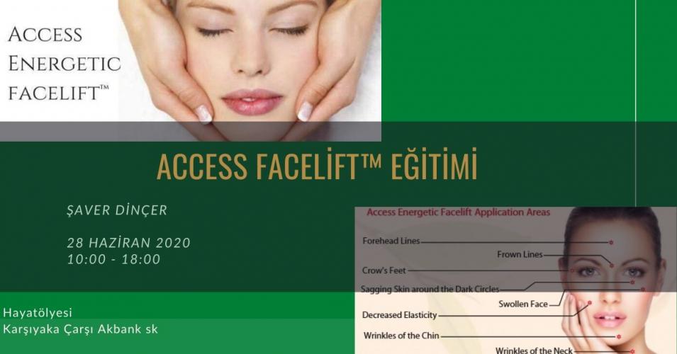 Access Facelift Eğitimi