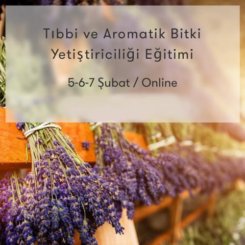 Tıbbi ve Aromatik Bitki Yetiştiriciliği Programı