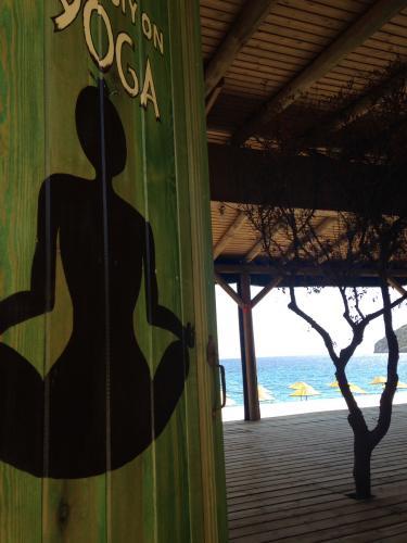 Dansla Yoga Terapi ve Yaratıcılık Kampı Didem Ertan