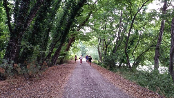 Duygu Bingöl ile Farkındalık (Mindfulness) Kampı