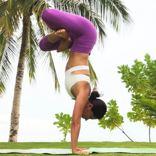 40 Saat Vinyasa Sanatını Öğrenme ve Öğretme(Yoga Alliance Yacep Sertifikalı)
