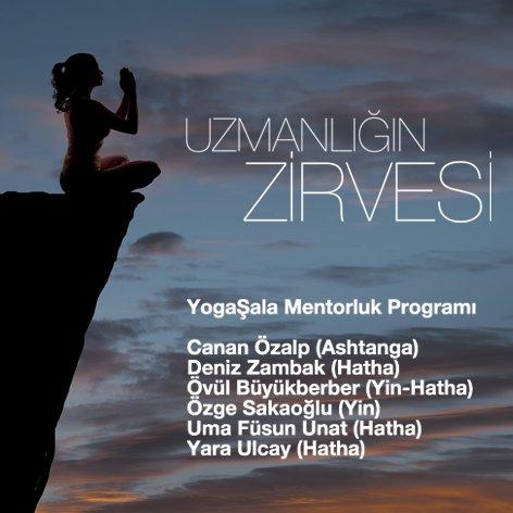 YogaŞala Mentorluk Programı (2016-2017)